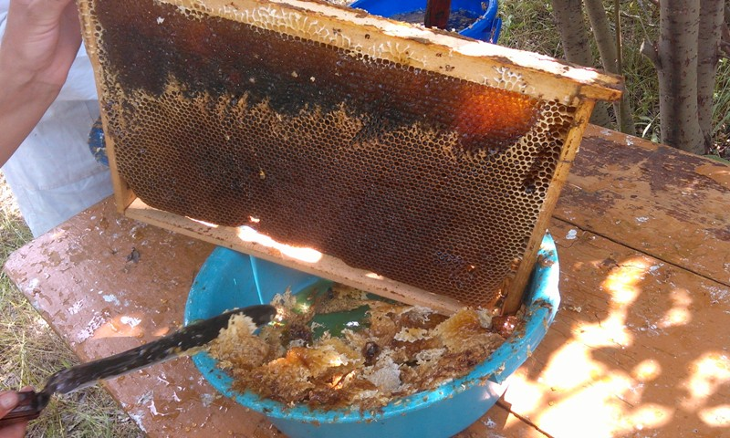 Чувашский мёд Петрова